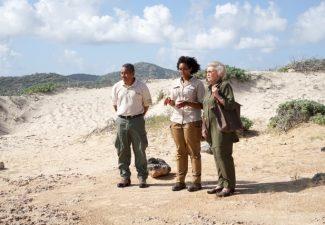 Natuurorganisaties Caribisch gebied maken zich zorgen om geld door Covid