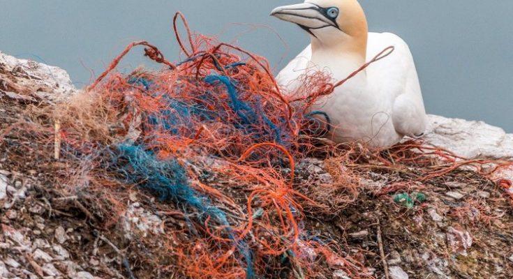 Sabanen ontvangen 'starter kit' om verbod op eenmalig plastic gebruik op te starten