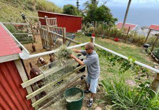 Geitenboer zijn op Saba is alles behalve makkelijk